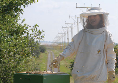 """Malmö Airport has started a project with bees to test the air quality around the airport. Kim Stenberg, Environmental Manager, LFV: """"Bees can be used as an environmental indicator. They are good indicators of chemical pollutions for two reasons: they have a high mortality when in contact with pesticides and their bodies store the pollution, which can be measured in a lab."""""""