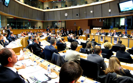 The hearing in the European Parliament brought together more than 100 participants.
